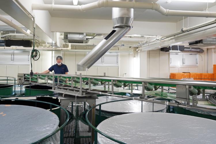 東酒造焼酎蔵ギャラリー1